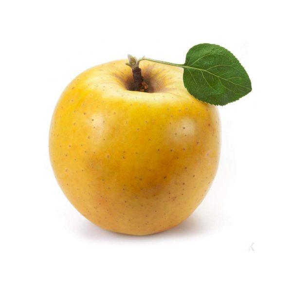 Apple ( Persian Yellow )