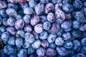 different kind of plum in iran - iran plum export