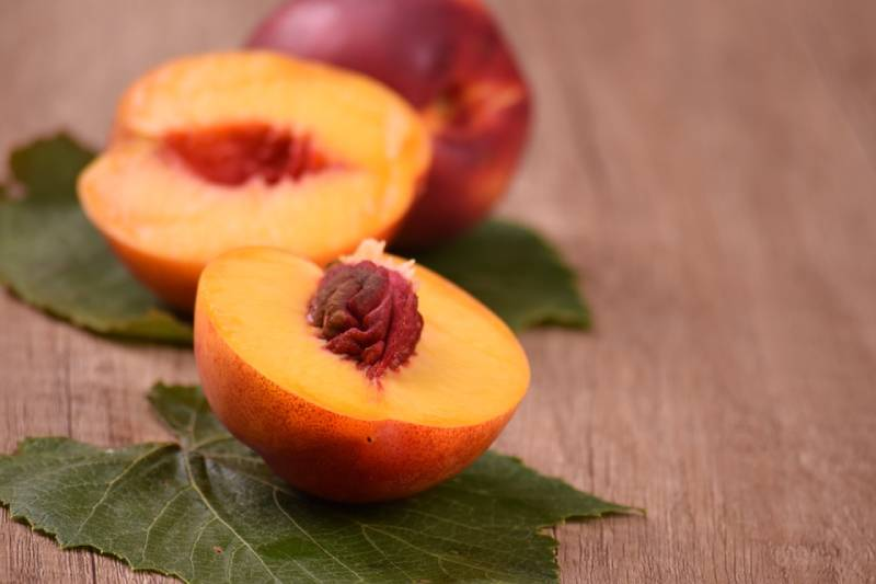 Different types of iranian nectarine and its difference with peaches