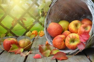 what is fiber ? and how much fiber is in an apple ?