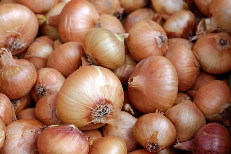 onion varieties in iran - Onion Properties for Health - red onion exporter