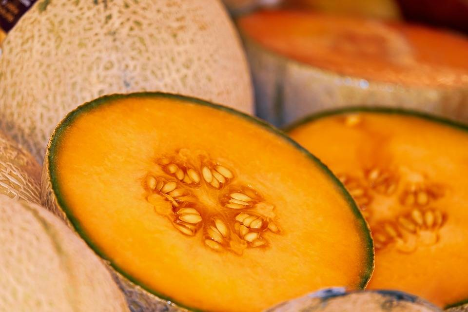 which melon is the sweetest ? best way to store melon - melon benefits