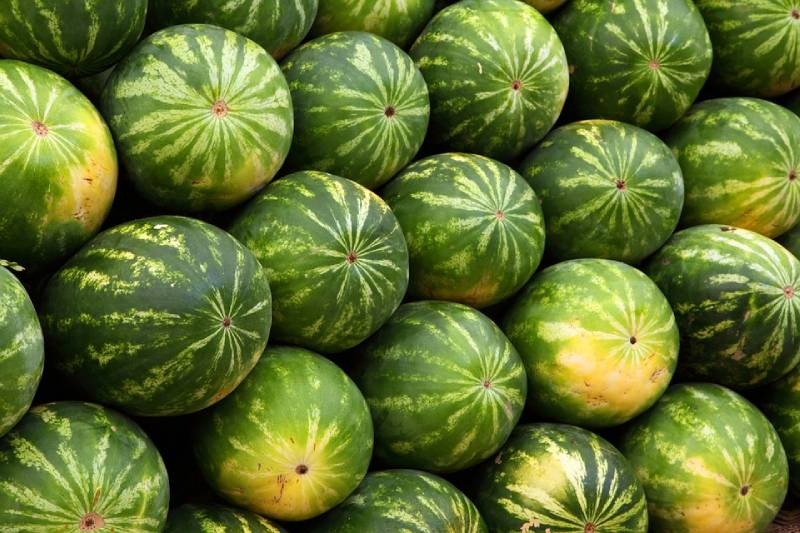 what are water melon benefits ? what is the sweetest watermelon ?
